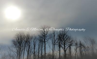 """""""Winter Haze"""" Wabash, Northwest Baltimore MD"""