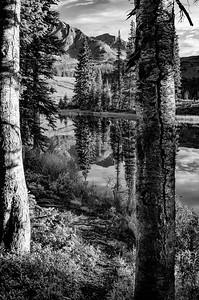 Alpine Splendor