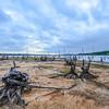 Alien World, Manasquan Reservoir, Howell, NJ