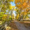 Autumn Scene, Allaire State Park, Howell, NJ