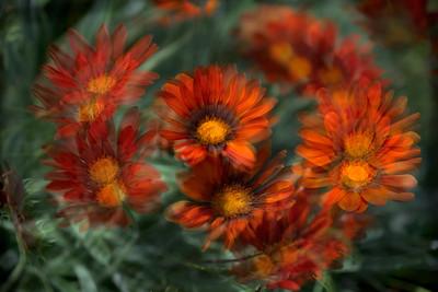 "ETC-3422  ""Orange Swirl"""