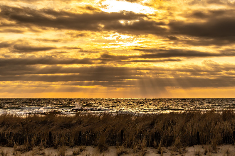 Sunrise Over Dunes On Beach, Ocean Grove 3/22/20