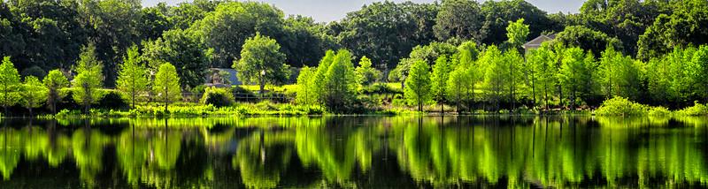 "ETC-3117  ""Panoramic Reflections"""