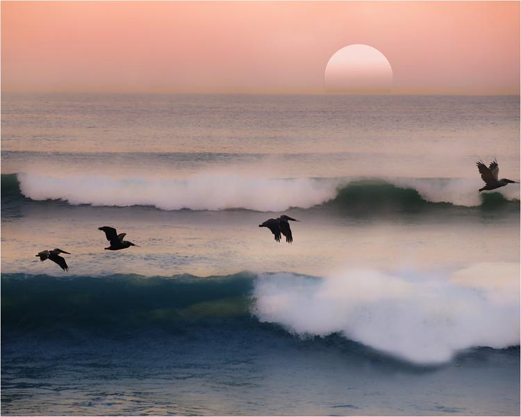 The ocean never sleeps