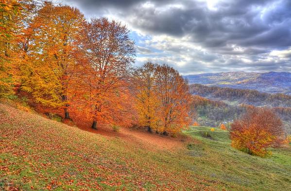 Fall in Romania