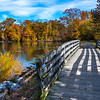 Autumn Scene at Manasquan Reservoir 11/1/18