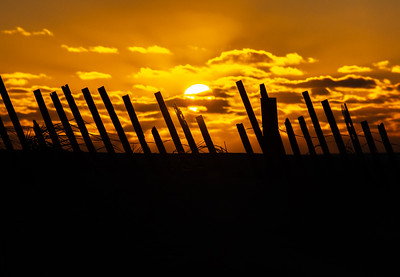 Sunrise Over Dune Fence in Island Beach State Park 2/17/19