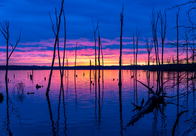 Sunrise At The Manasquan Reservoir 12/28/20
