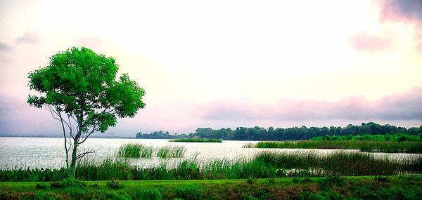 """ETC-3064  """"A Lake View"""""""
