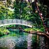 "ETC-3506-WPP1725 ""Bridge over Canal "" Med file_9903"