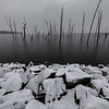 Snow-Covered Rocks at Manasquan Reservoir 3/1/19