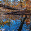An Autumn Footbridge 10/27/20