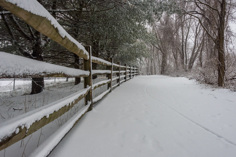 Snowy Fence at Manasquan Reservoir 3/21/18