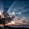 Fantastic Sunburst Through Trees