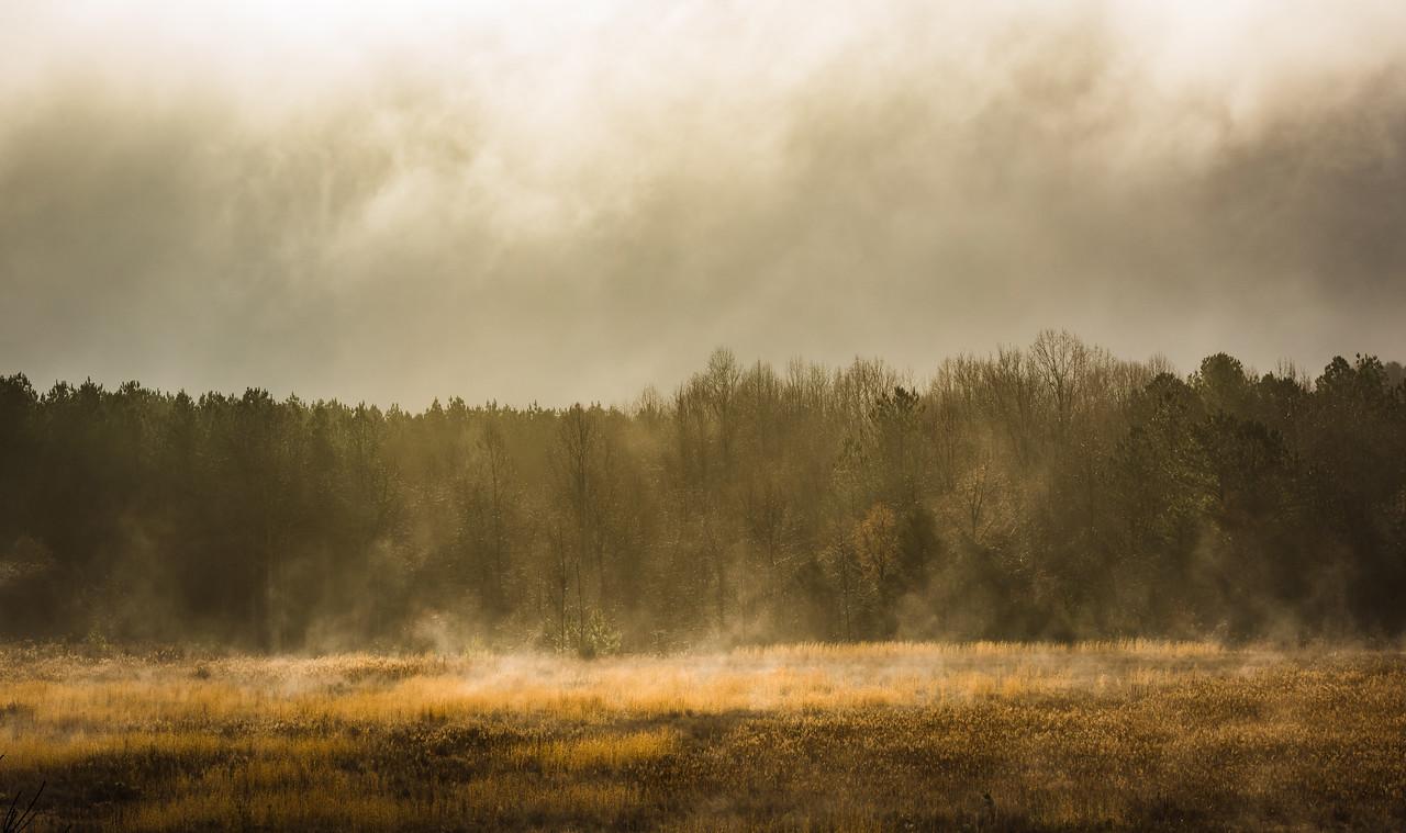 Sunlight breaking through fog