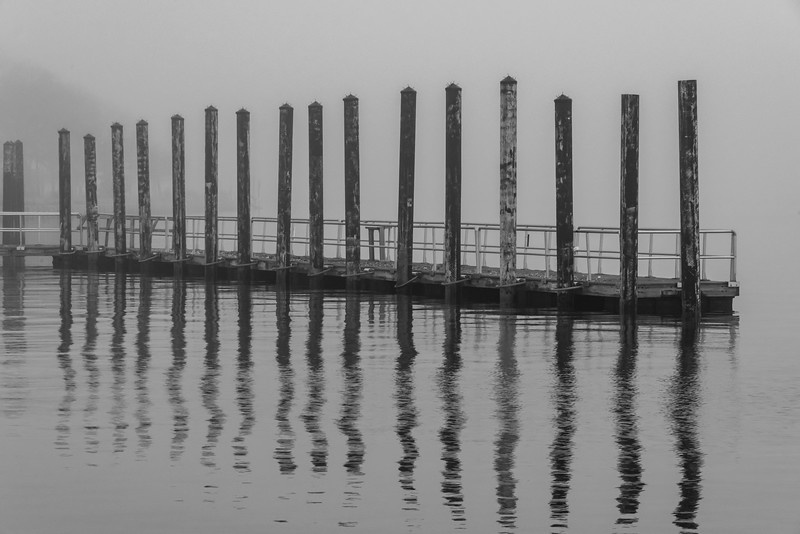 Foggy Morning at Belmar Marina 4/28/18