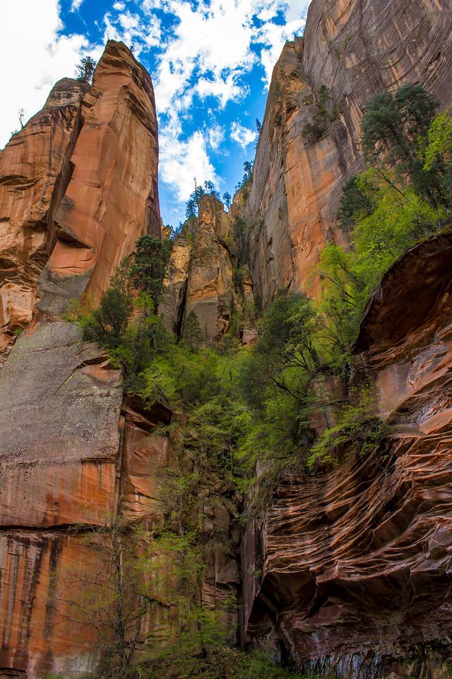 West Fork Hike, Sedona, Arizona
