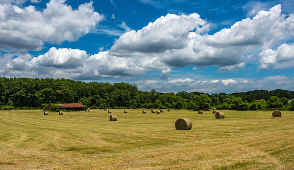 Hay Bales on a Farm 6/19/18