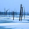 Frozen Manasquan Reservoir, Howell, NJ