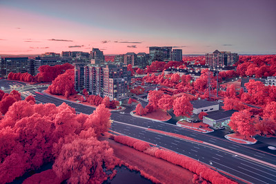 Reston in aerochrome