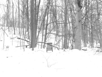 winter chair - landscape format
