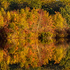 Autumn Colors Reflecting at Manasquan Reservoir 10/23/17