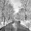 Snowy Creek 3/22/18