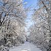 Untouched Snowy Trail, Wall, NJ