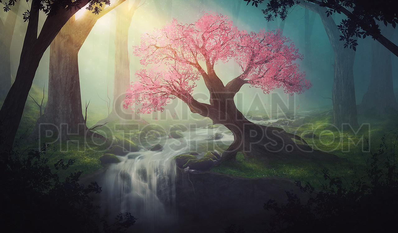Pink tree in forest
