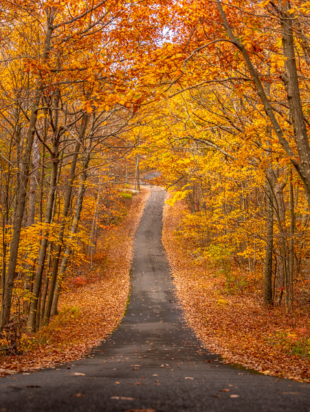 A Scenic Autumn Road in High Point State Park 10/22/20