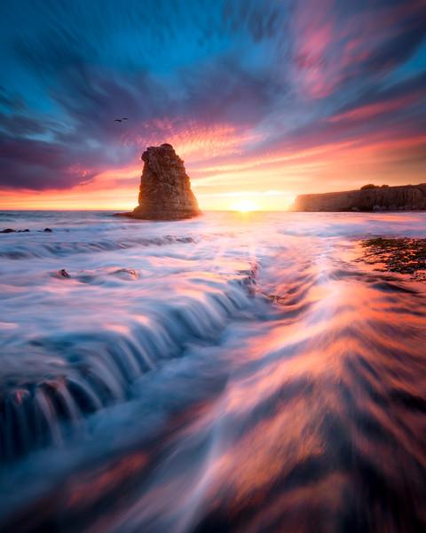Silken Splendor
