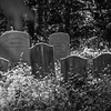 Old Cemetery, Farmingdale, NJ