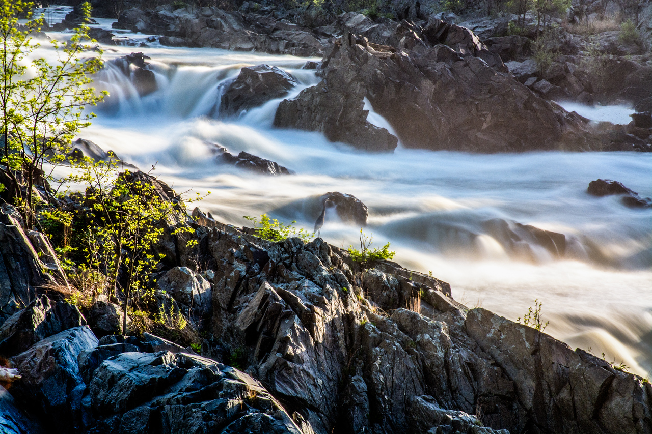 The Potomac River in Great Falls Park Maryland