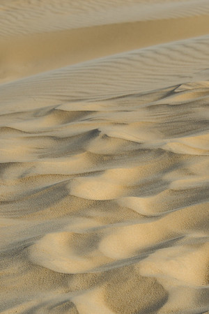 Sand 1486