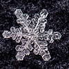 Beauty of an Individual Snowflake 2/15/16