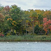 Shark River Panorama with Autumn Colors