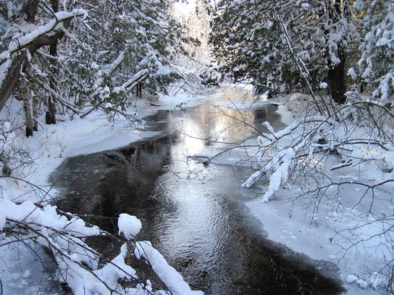North Branch Thunder Bay River