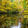 Autumn Reflection in a Creek 10/28/18