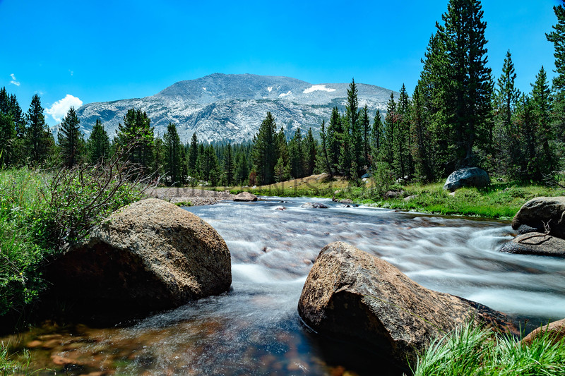 Dana Meadow, Yosemite