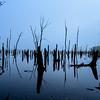 Foggy Manasquan Reservoir, Howell, NJ