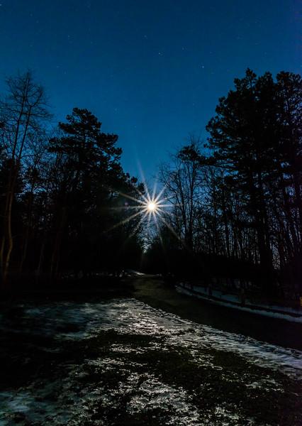 Full Moon Rising Over Tree Line 3/12/17