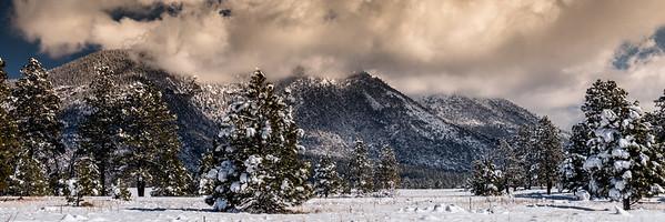 Mount Elden, Flagstaff, AZ