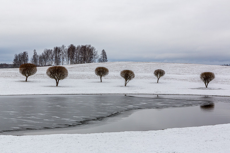 Idyllic wintery scene with small willow trees in a beutiful landscape with pond, ice, snow, hill and cloudy blue sky in Inesi (Ineši) in Latvia
