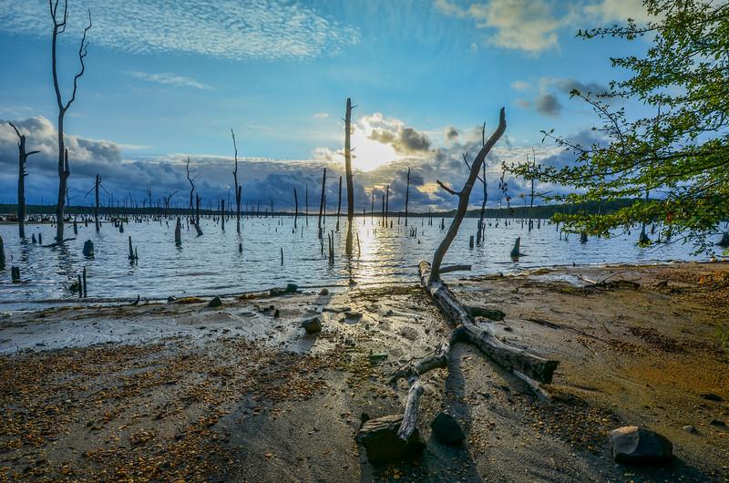Sunrise Along Manasquan Reservoir, Howell, Nj
