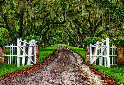 Plantation South Carolina