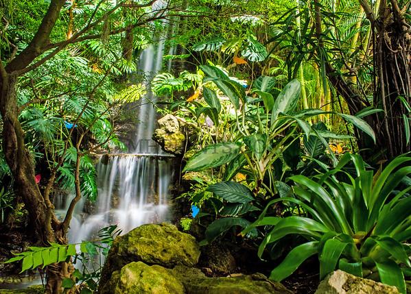 Krohn Conservatory Waterfall