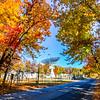 Autumn Colors Over Project Diana Site, Belmar, NJ