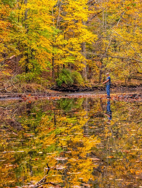 A Fisherman With Autumn Colors Reflecting In A Pond 10/22/20