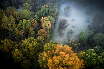 Foggy Opening