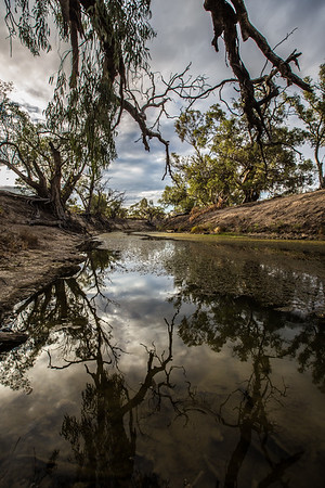 Darling River Tributary